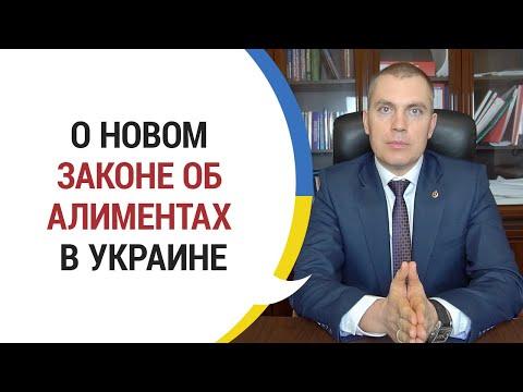 О новом законе об алиментах в Украине