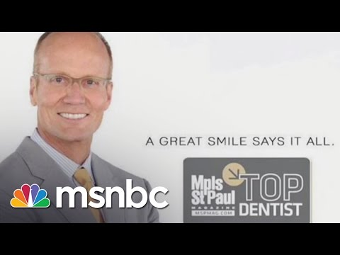 The Dentist Who Killed Cecil The Lion | Andrea Mitchell | MSNBC