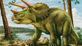 Triceratops - roślinożerny przeciwnik tyranozaura