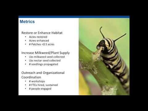 2018 Applicant Webinar: Monarch Butterfly and Pollinators Conservation Fund