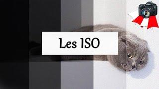 Les ISO -  Paramètre d'exposition - Apprendre la photo