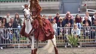 La beauté des spectacles équestres
