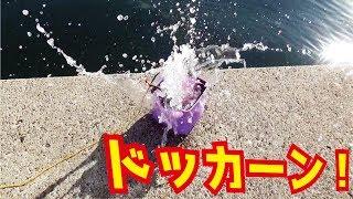 朝一の港内にジグを投げたらどっかーんデカイの釣れた! thumbnail