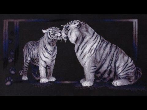 """""""Тигриная любовь"""" Панна"""