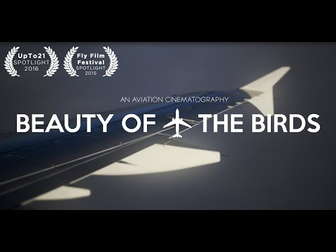Beauty Of The Birds (Aviation Tribute Movie)