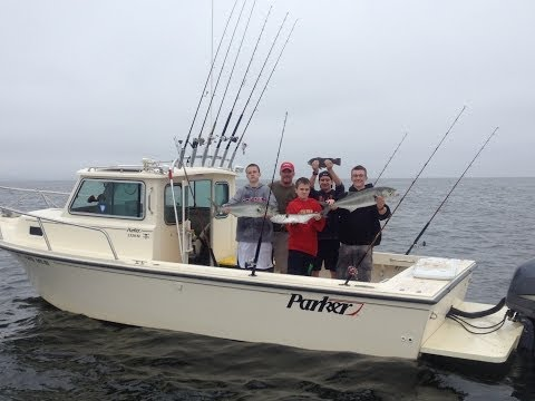 How To Catch Bluefish On Chunks, THE ONE THAT GOT AWAY