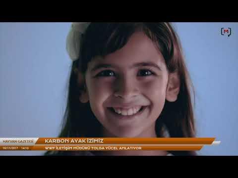 Hayvan Gazetesi: WWF İstanbul Maratonu Kampanyası Konuk: Tolga Yücel