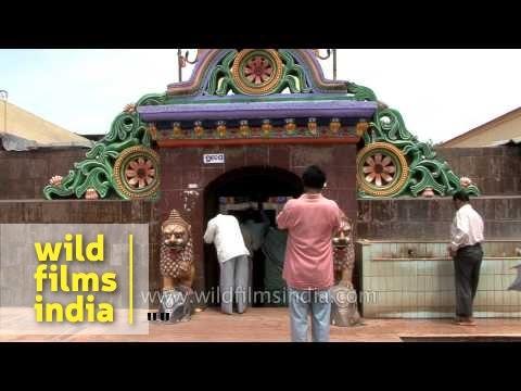 Devotees throng Chandi Temple in Cuttack, Odisha