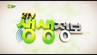 '2TV저녁생생정보'2020온라인부산전포커피축제현장+장…