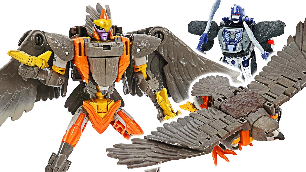 Transformers Kingdom Airazor! Transform into a hawk! | DuDuPopTOY