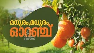 Orange Paadangal Akalangalile India 17/02/16