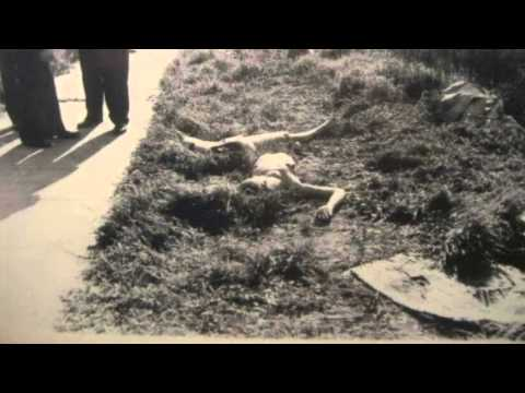 The Black Dahlia Real Crime Scene Photos