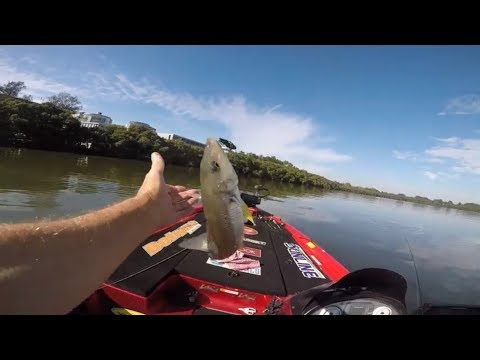 How To Catch Big Whiting Fishing With Little Metal Blades.