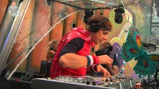 Tomorrowland 2013 - Martin Solveig
