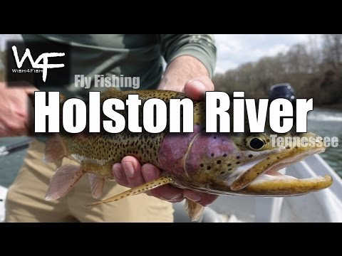 """W4F - Fly Fishing Tennessee """"Holston River"""""""