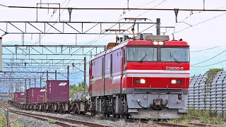 電気機関車EH800(10) ~新油川中線停車・発車 第99列車~ ※ホイッスル・走行音注意