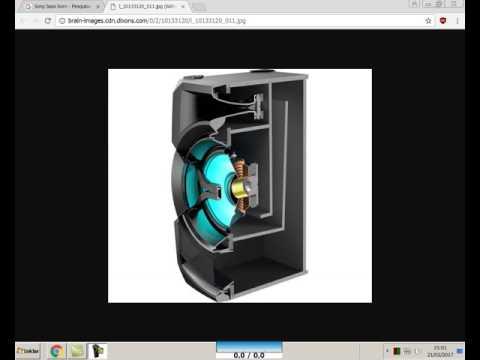 Essa unidade Bass Horn do Shake X3D