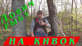 Ловля на боковой кивок Как поймать рыбу в камышах