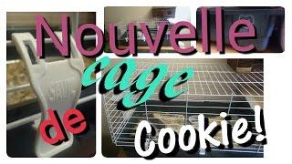 Nouvelle Cage De Cookie!