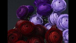 Шикарные бумажные цветы Susan Beech. Мастер-класс.(Если вы любите что-то делать своими руками, дарить подарки собственного изготовления, то этот канал для..., 2015-03-11T05:33:53.000Z)