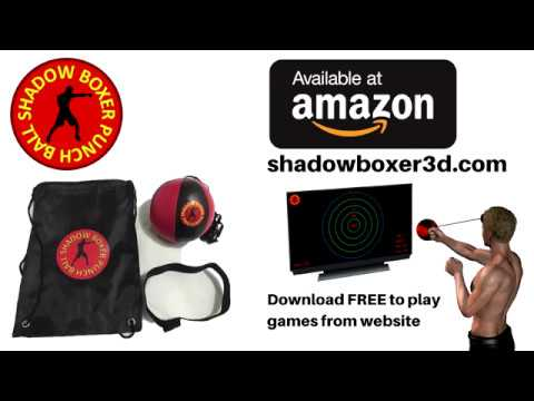 Shadow Boxer Punch Ball (Free Style Boxing Training & Boxing Video Game)