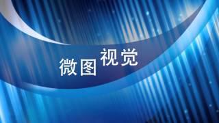 微图工业相机China industry camera,THE IMAGING SOURCE,高速相机VIEWORKS,CCD CMOS GIGE,镜头lens,远心镜头,光源
