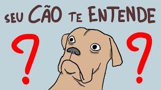 Seu Cachorro te Entende? | Ep. 97
