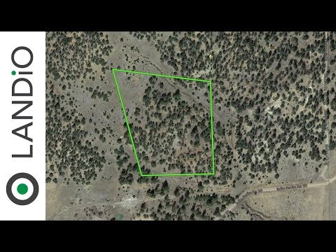 Land For Sale : 12 Wooded Acres in Cibola County, New Mexico at Wholesale Price