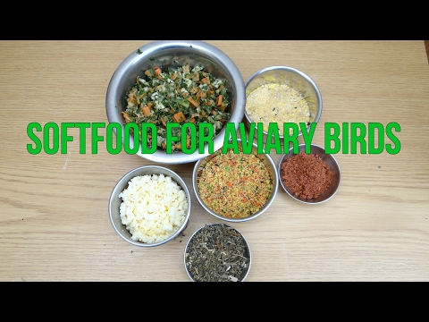 Mixing Softfood For Birds