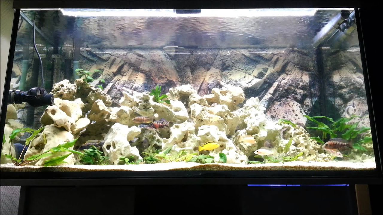 Aquarium 360 Liter Led Beleuchtung Tageslichtsimulatoren Youtube