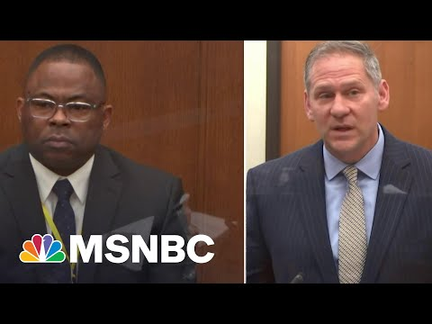 LAPD Officer Testifies He Did Not Perceive Bystanders As A Threat During George Floyd Arrest   MSNBC