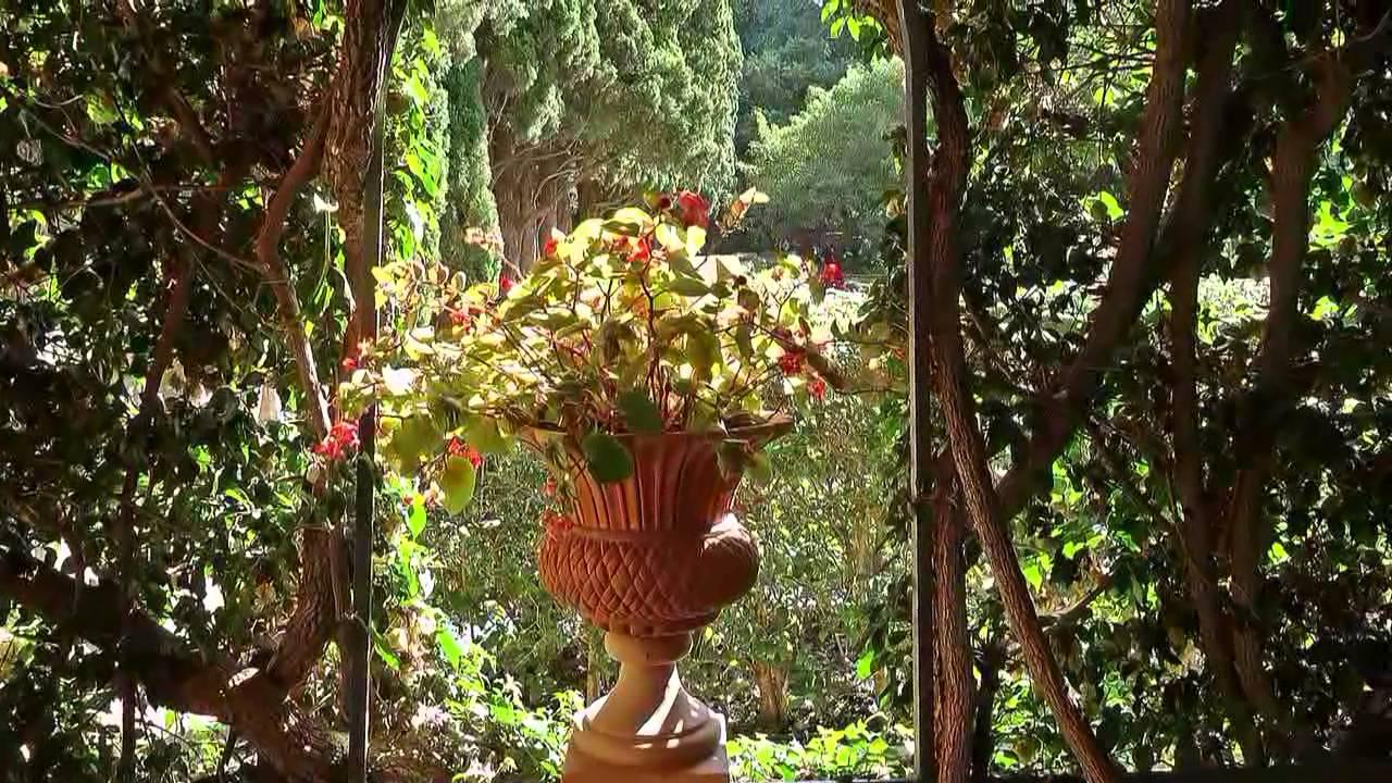 Paseo por los jardines de monforte valencia youtube for Antorchas para jardin combustible