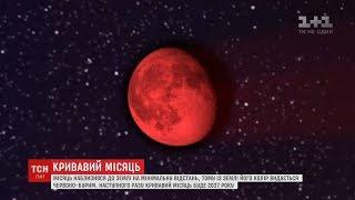 Місяць наблизився до Землі на мінімальну відстань та став червоно-бурим