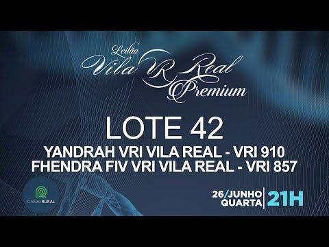 LOTE 42 (VRI 910/VRI 857)