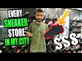 I WENT SHOPPING at EVERY SINGLE SNEAKER STORE in My CITY! OVER 3,000 SNEAKERS!