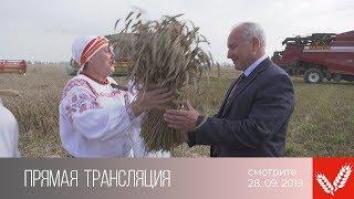 Анонс. Прямая трансляция «Дожинки-2019» из Браслава (28.09.2019)