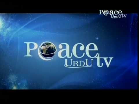 Peace tv urdu official promo youtube - Television c discount ...