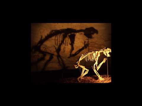 Prehistoric Cats & cats like creaturs.wmv