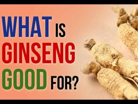 Herbs in ABC order and their uses [ AMERICA GINSENG ]