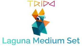 Trido Laguna Medium Set - How to build a Cute Baby Kangaroo