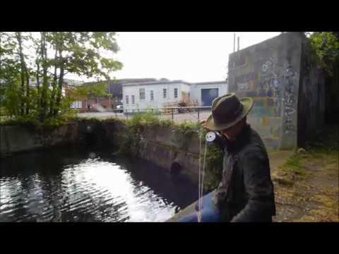 Fly Fishing On A Urban Chalk Stream