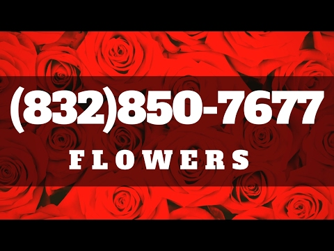 Top Florist Houston   Same Day Flower Delivery in Houston TX