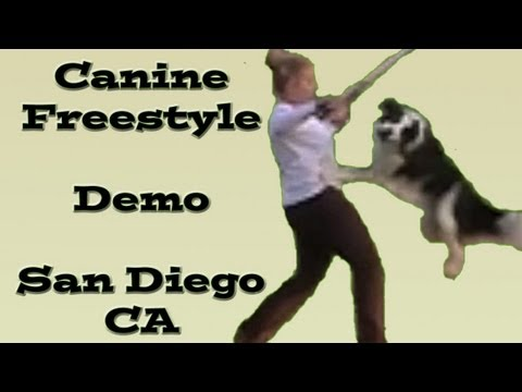 Star Wars Canine Freestyle R..