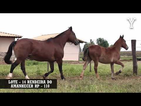 LOTE   14 RENDEIRA DO AMANHECER RP   110