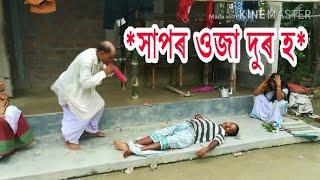 সাপৰ ওজা দুৰ হ/Assamese comedy video/Assamese funny video
