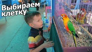 VLOG: На птичьем рынке / Выбираем клетку для попугая / Клим Ниндзяго