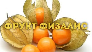 VLOG Видеообзор фрукты / Физалис можно ли его есть и какой он на вкус