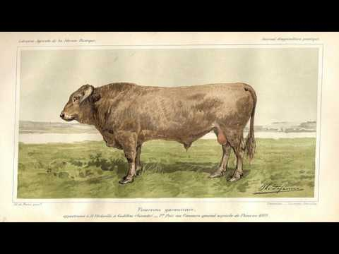 Historical Tales, Volume VII: Spanish | Charles Morris | Early Modern, General | English | 1/5
