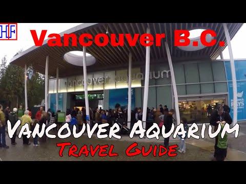 Vancouver | Vancouver Aquarium | Tourist Attraction | Episode# 7