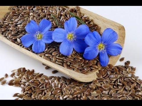 Лён (семена льна) - польза и вред для похудения, как
